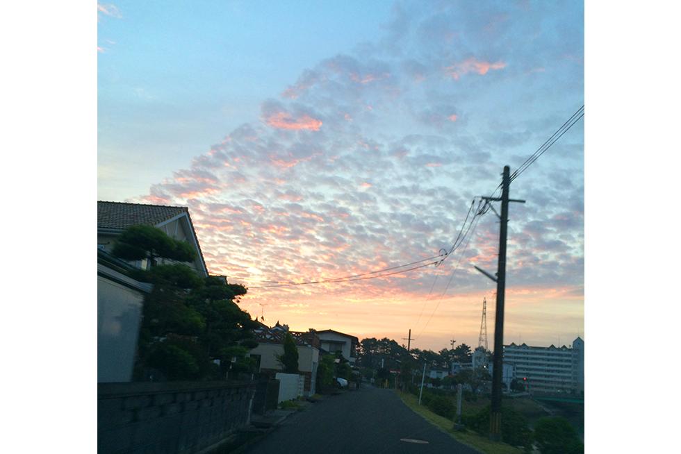 03-blog-noda2015110602