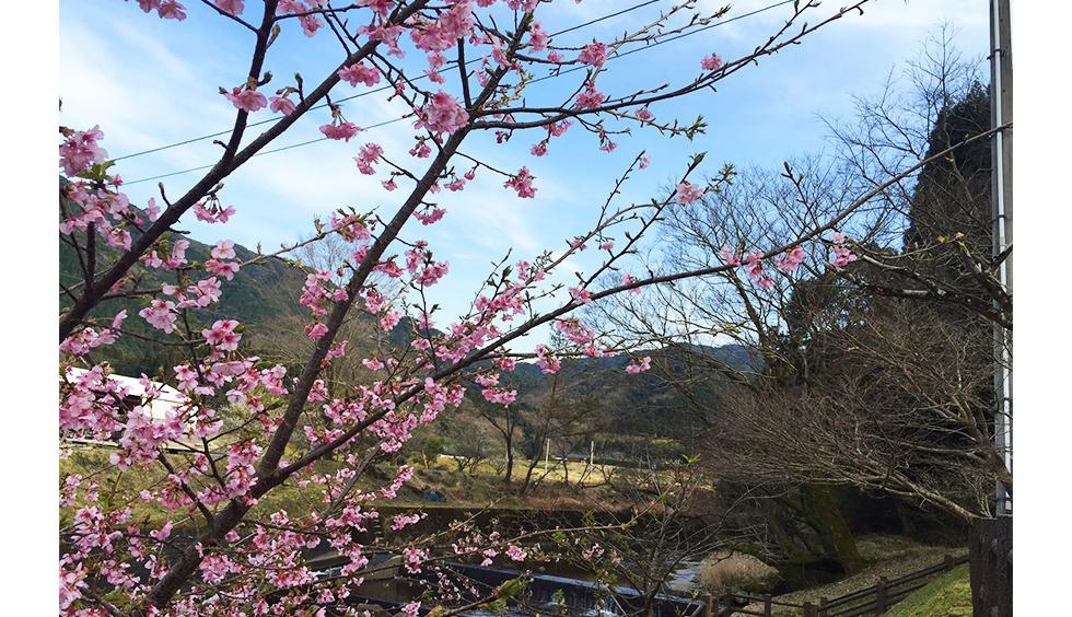 04-blog-futagawa2016022502
