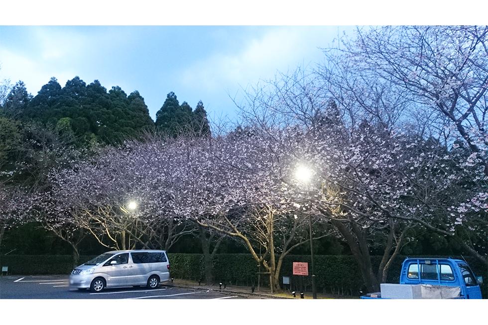 02-blog-nakamura2016041101