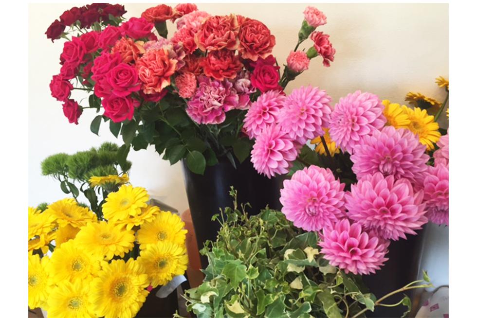 03-blog-futagawa2016050902
