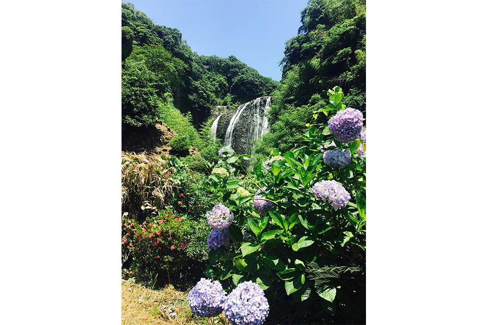 03-blog-kawaguchi2016062101