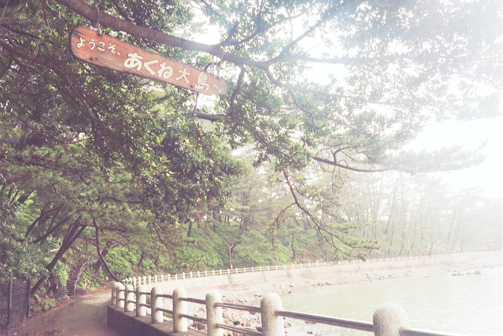 02-blog-komaji2016072101