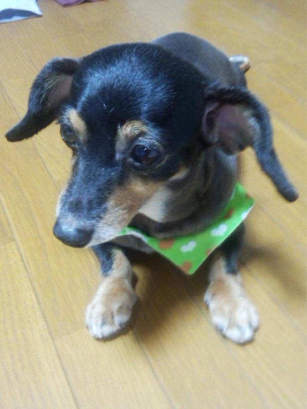 02-blog-kondou2016071502