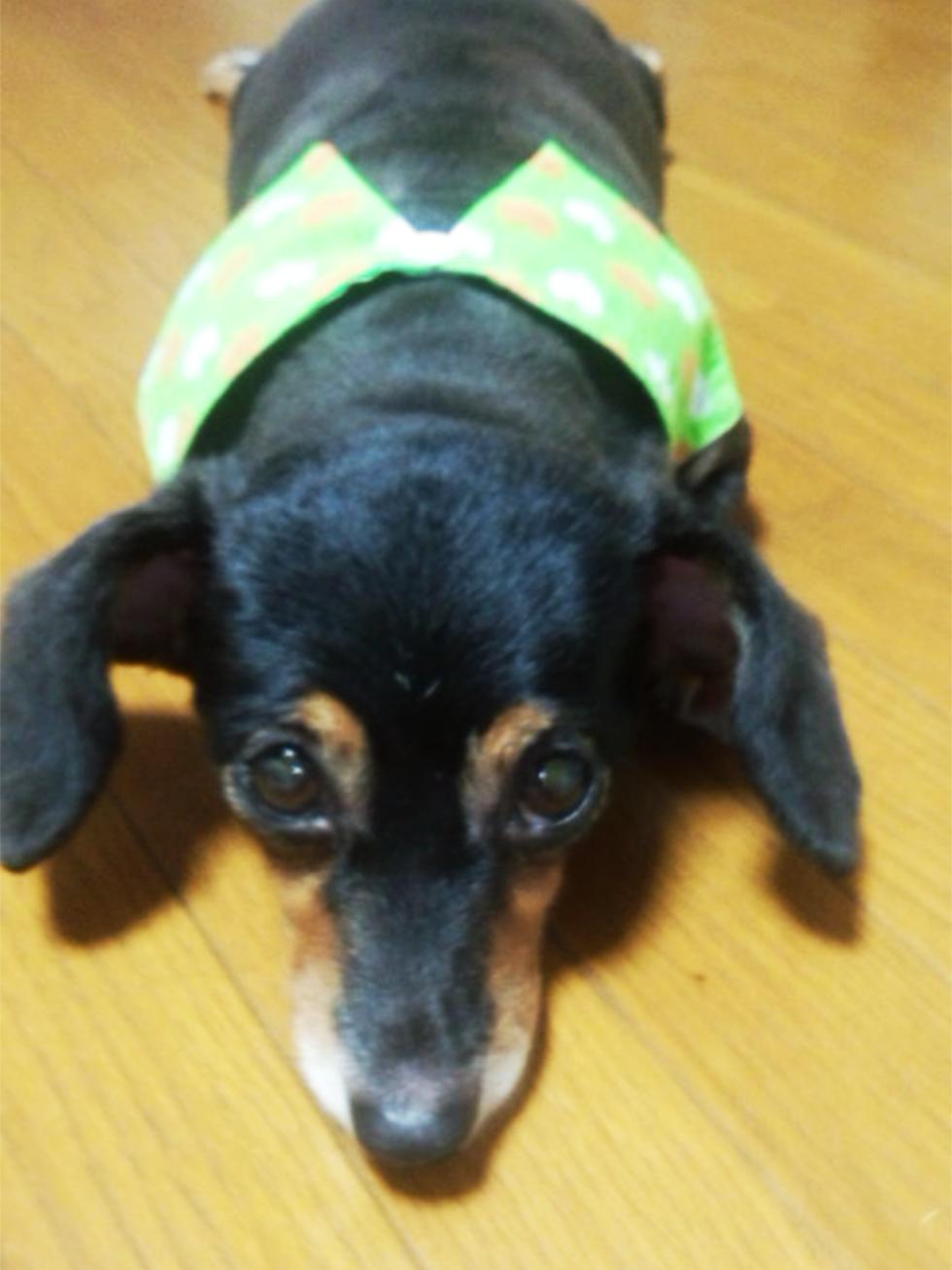 04-blog-kondou2016071502