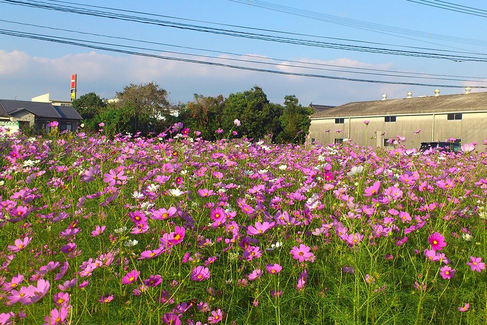 02-blog-nakamura2016110701
