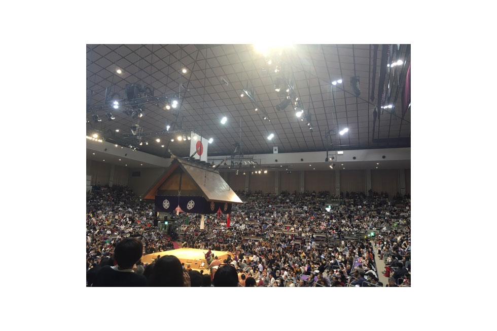 03-blog-sane2016121802