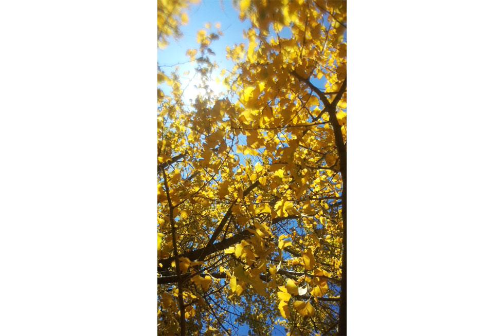 05-blog-kondou2016121302