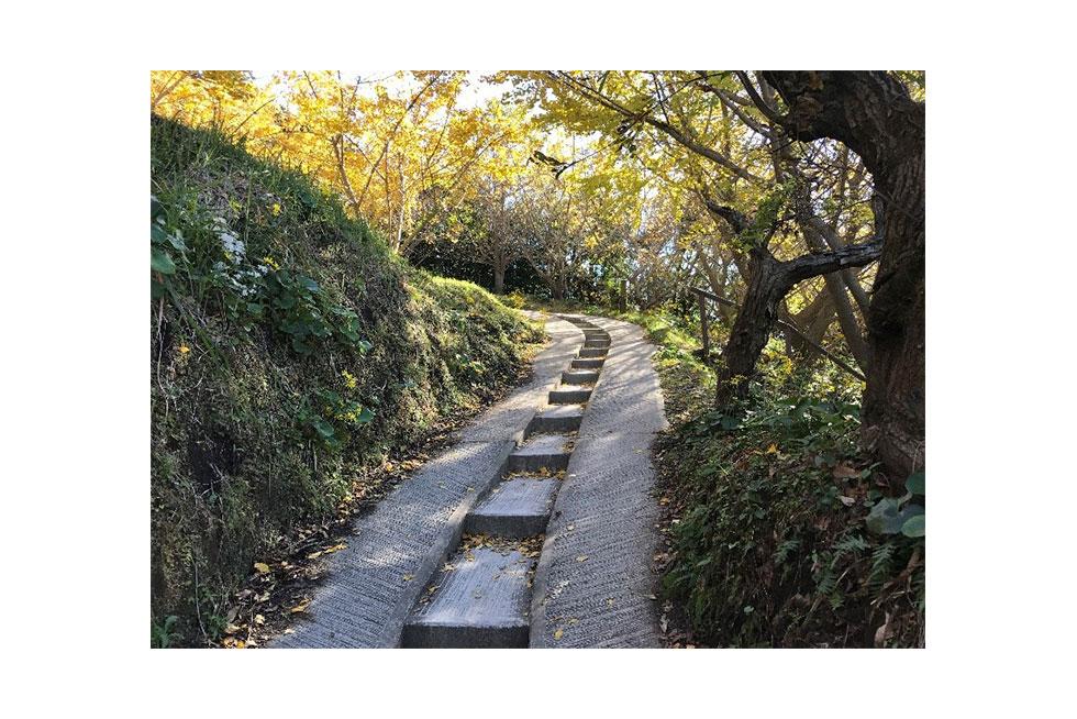 05-blog-maeda2016122202